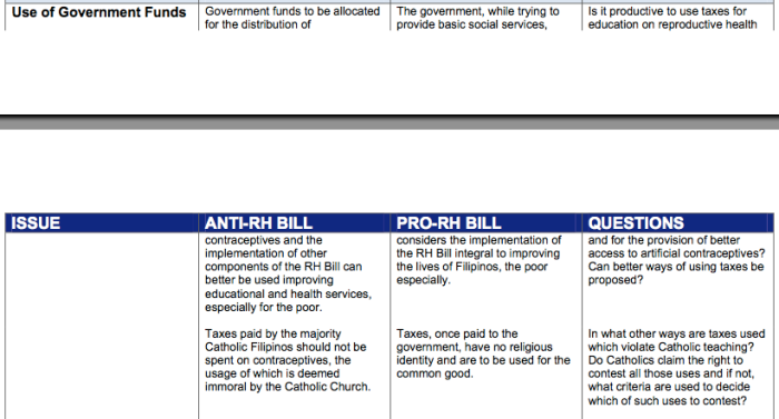 The Reproductive Health Bill - Essay Example