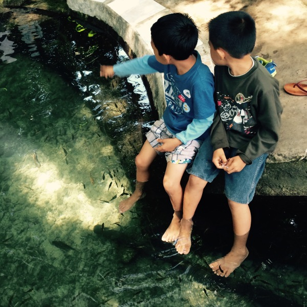 Two children enjoy the fish spa in the Enchanting Tree, Lazi, Siquijor. Photo: Fr. Jboy Gonzales SJ