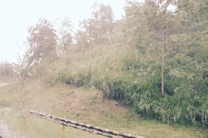 Rain in Bukidnon