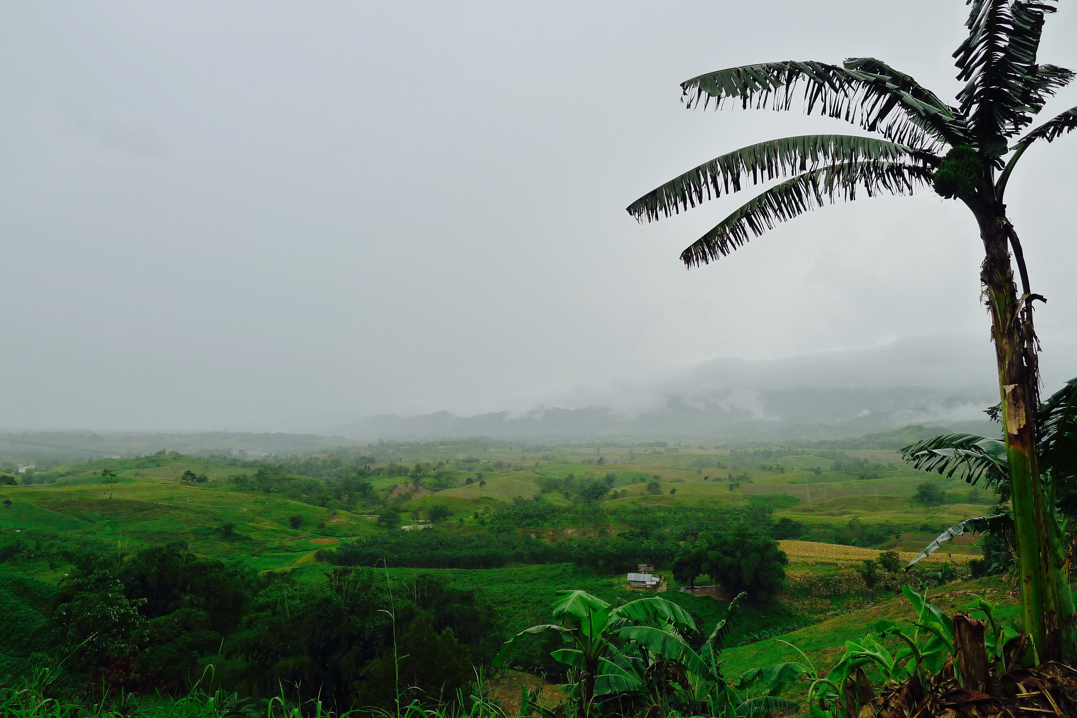 Overlooking the valley of the Jesuit mission area of Cabanglasan, Bukidnon after a heavy downpour. Photo: Fr. Jboy Gonzales SJ