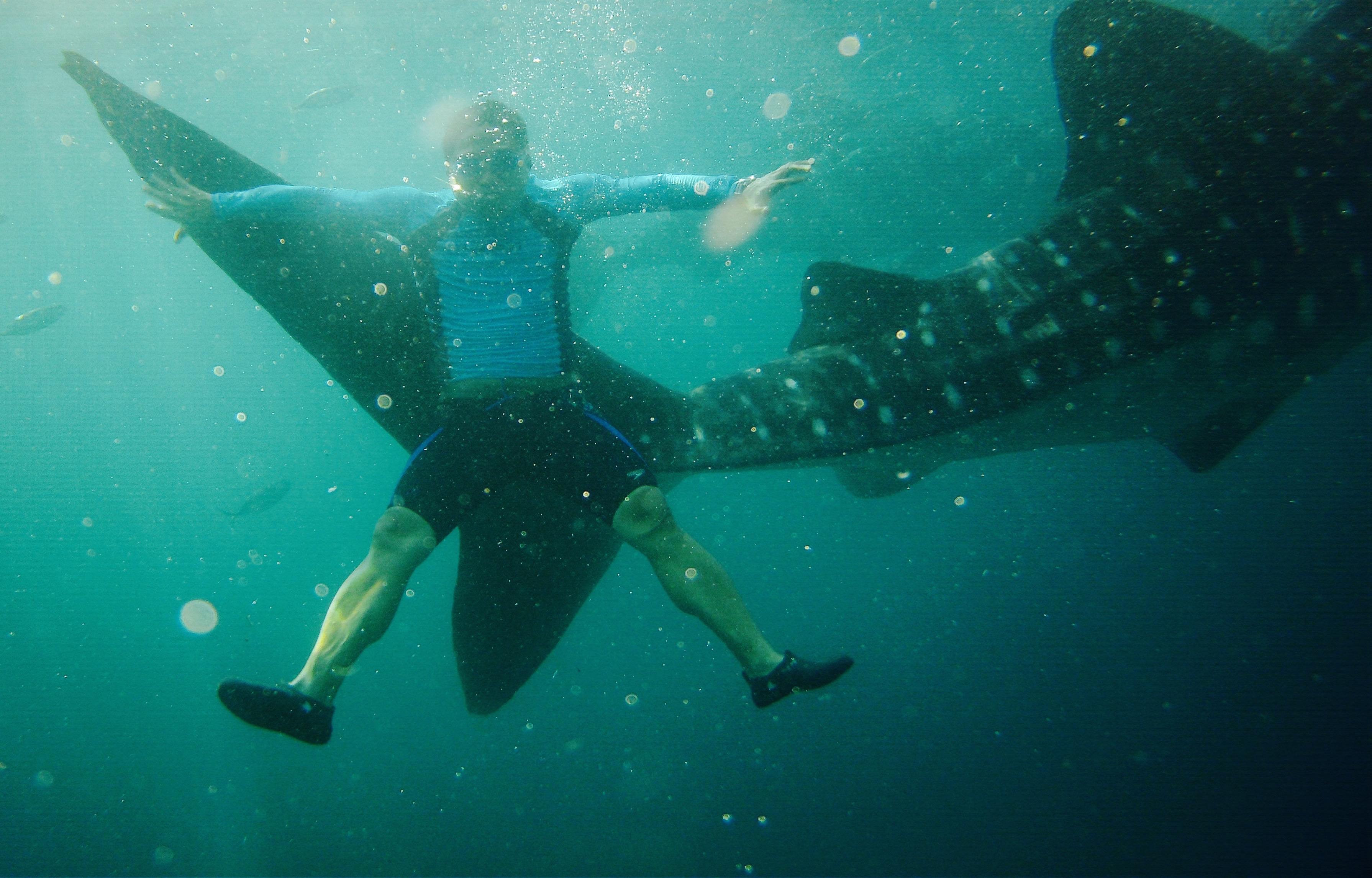 With whale sharks. Oslob, Cebu. 23 August 2015 Photo: Fr. JBoy Ginzales SJ
