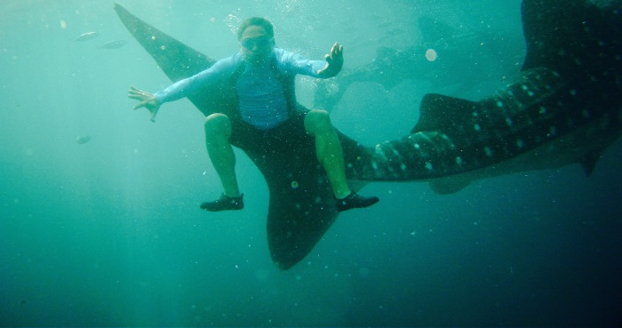 With whale sharks. Oslob, Cebu. 23 August 2015 Photo: Fr. JBoy Ginzales SJ